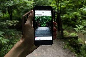 Cultural economics - Image: Bridge gadget hand i Phone macro 1845364 1280