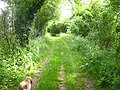 Bridleway south of Wallington - geograph.org.uk - 16364.jpg
