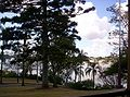 Brisbane-River-from-Newstead-House-1.jpg