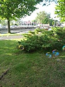 Britannia Yacht Club garden & bubbles near turnaround 1.jpg
