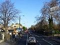 Brixton - Brixton Hill & Beechdale Road - near Blenheim Gardens - panoramio.jpg