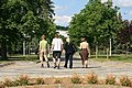 Brno, Wikivýstaviště 2018-05-13, exkurze (6359).jpg