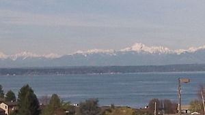Broadview, Seattle - View of the Olympic Mountains and Puget Sound from Broadview