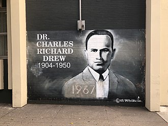 Charles R. Drew - Mural of Doctor Charles R. Drew at the Charles Richard Drew Educational Campus / Intermediate School in the Bronx, NY