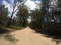 Brooman NSW 2538, Australia - panoramio (143).jpg