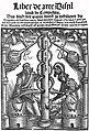 Brunschwig Titelblatt 1512.jpg