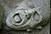 Buchenwald-100625-14486-Schwerte-hell.jpg