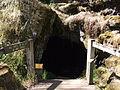 Budj Bim ‐ Mt Eccles National Park, Victoria, Australia 47.jpg