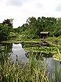Burnby Hall Gardens - geograph.org.uk - 876867.jpg
