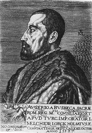 Ogier Ghiselin de Busbecq -  Ogier Ghiselin de Busbecq, 1557, 12.3 × 8.8 cm by Melchior Lorck