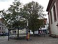 Bushaltestelle Elisabeth-von-Thadden-Platz.JPG