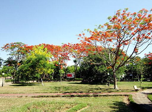 Công viên Nguyễn Văn Trỗi