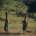 COLLECTIE TROPENMUSEUM Verkoopsters van palmwijn TMnr 20018483.jpg