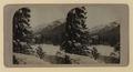 CPR Hotel, Banff, winter (HS85-10-19332) original.tif