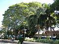 Calaca,Batangasjf9946 18.JPG