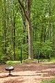 Caledon State Park (7987005367).jpg