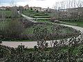 Camino Aldea del Pinar.jpg