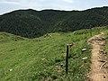 Campdevànol, Province of Girona, Spain - panoramio.jpg