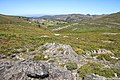 Campo de Dobras da Castanheira - Portugal (51624502966).jpg