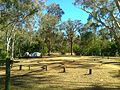 Candlebark camp site, Lake Eildon - panoramio.jpg