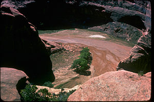 Canyon de Chelly National Monument CACH2825.jpg