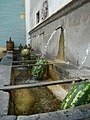 Capo l'acqua per Basilicata Coast To Coast-2.jpg