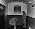 Carchar Rhuthun Ruthin Gaol Grade 5 Star.jpg