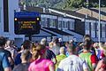 Cardiff Half Marathon (30074276165).jpg