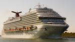 Carnival Dream Bow (cropped).png