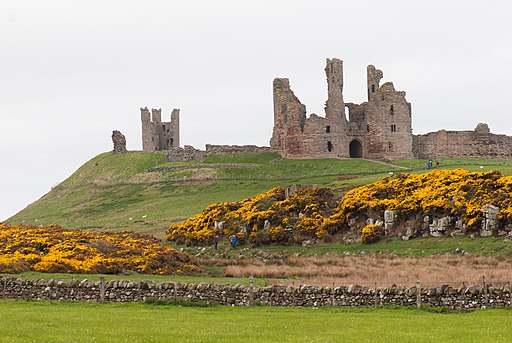 Castle skyline (26295821596)