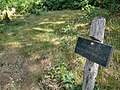 Cemetery in Steinfurt (3).jpg