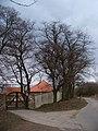 Chaby, čp. 1, bývalé památné stromořadí.jpg