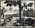 Chauveau - Fables de La Fontaine - 08-22. Le Chat et le Rat.jpg