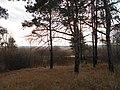 Cherkas'kyi district, Cherkas'ka oblast, Ukraine - panoramio (1207).jpg