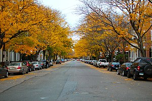 Chestnut Street District - Looking east on Chestnut Street in the fall