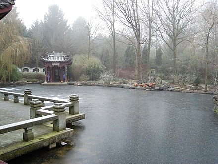 Karpers In Tuin : Chinese tuin wikiwand