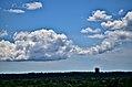 Chown Cloud (18946819309).jpg