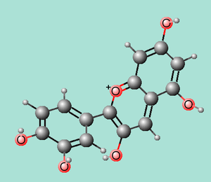 Anthocyanidin - Molecule in 3D of the anthocyanidin cyanidin