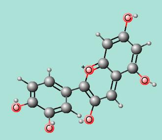 Anthocyanidin - Molecule in 3D of the anthocyanidin cyanidin