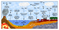 Ciclo do Enxofre (Sulfur Cycle).png