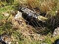 Cist (burial chamber) on Auchenreoch Muir - geograph.org.uk - 915099.jpg