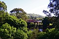 Clarence Town Bridge - panoramio.jpg