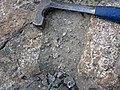 Clast-rich impact pseudotachylite (Sudbury Breccia, Paleoproterozoic, 1.85 Ga; Windy Lake Northwest roadcut, Sudbury Impact Structure, Ontario, Canada) 75 (32814840297).jpg