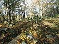 Cmentarz żydowski w Białej 9.jpg