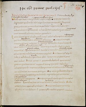 Letter of Jerome to Pope Damasus - Image: Codex Sangallensis 48 005