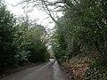 Colehill, Northleigh Lane - geograph.org.uk - 1617516.jpg