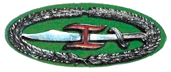 Combat Commander's (Kagitingan) Badge
