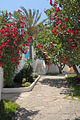 Complexe touristique de la Corne dor (Tipaza) (2534445618).jpg