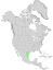 Condalia hookeri range map 0.png