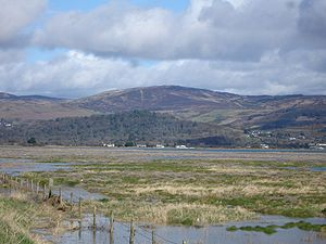 Marshes along the coast at Dundalk, Co Louth I...